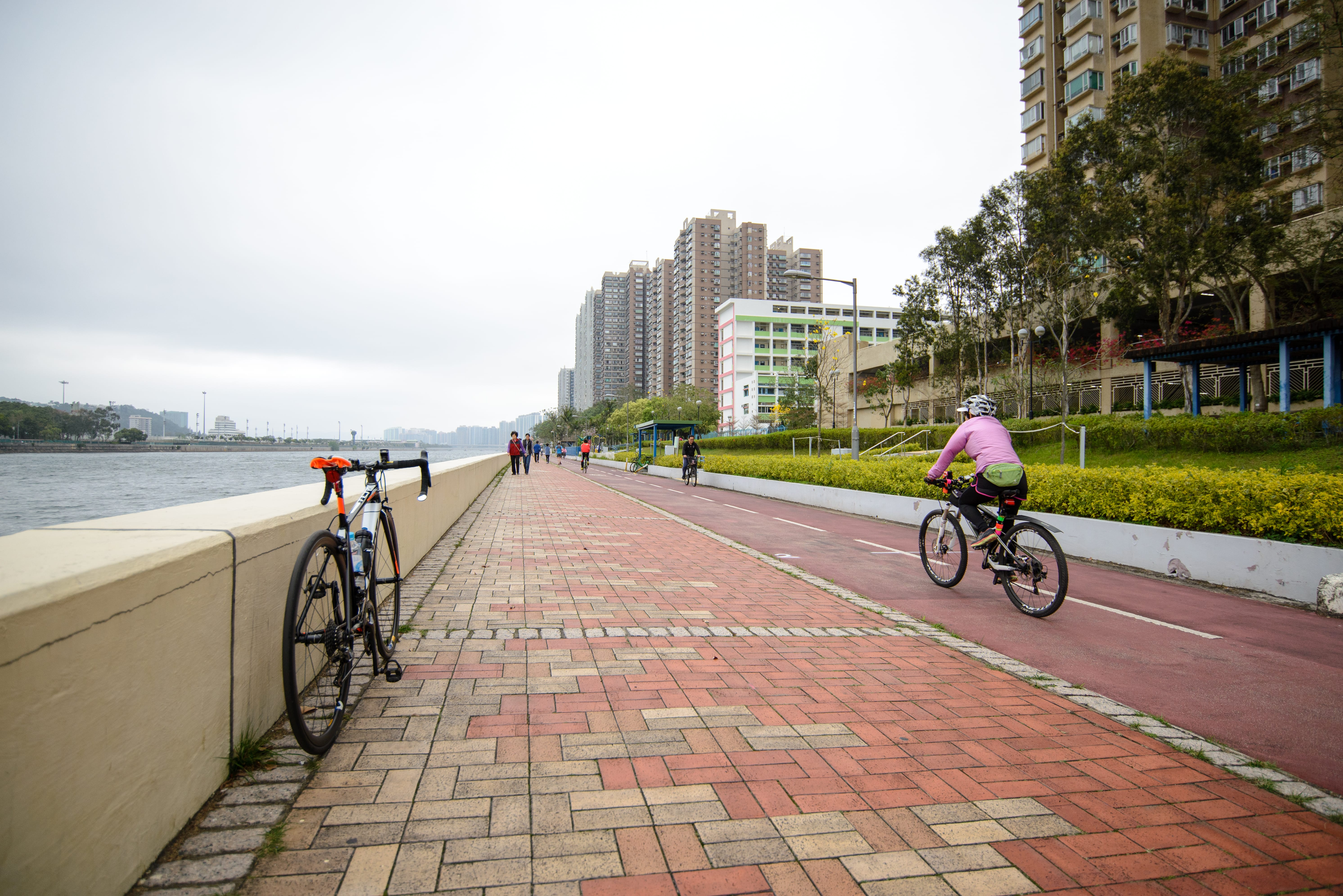 Shing Mun River Promenade opposite to the Jockey Club Shatin Race Course