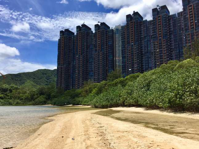 High rise luxury apartments next to the Starfish Bay