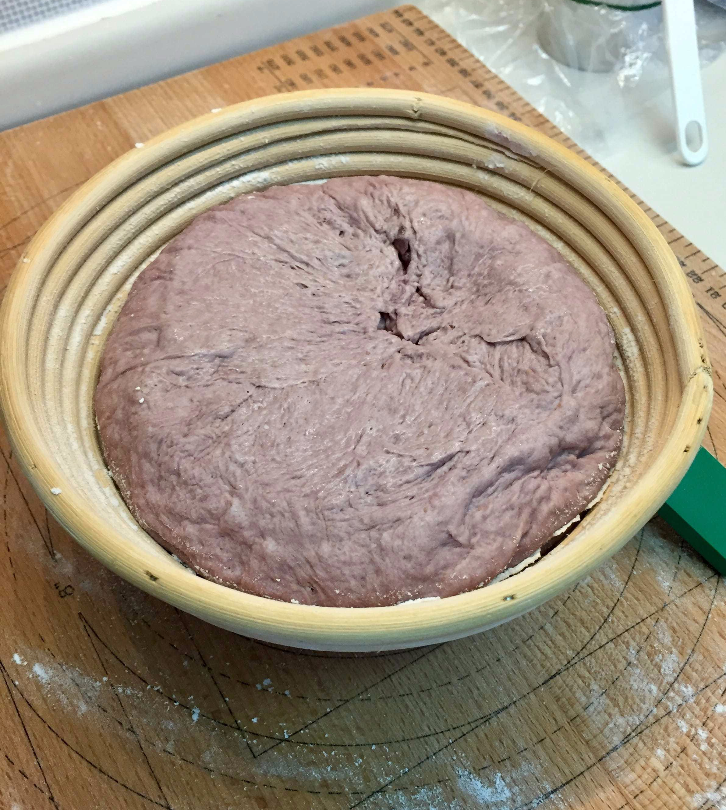 Main dough in proofing basket