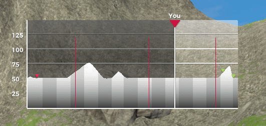 VirtuGO Beta - Route Profile Display