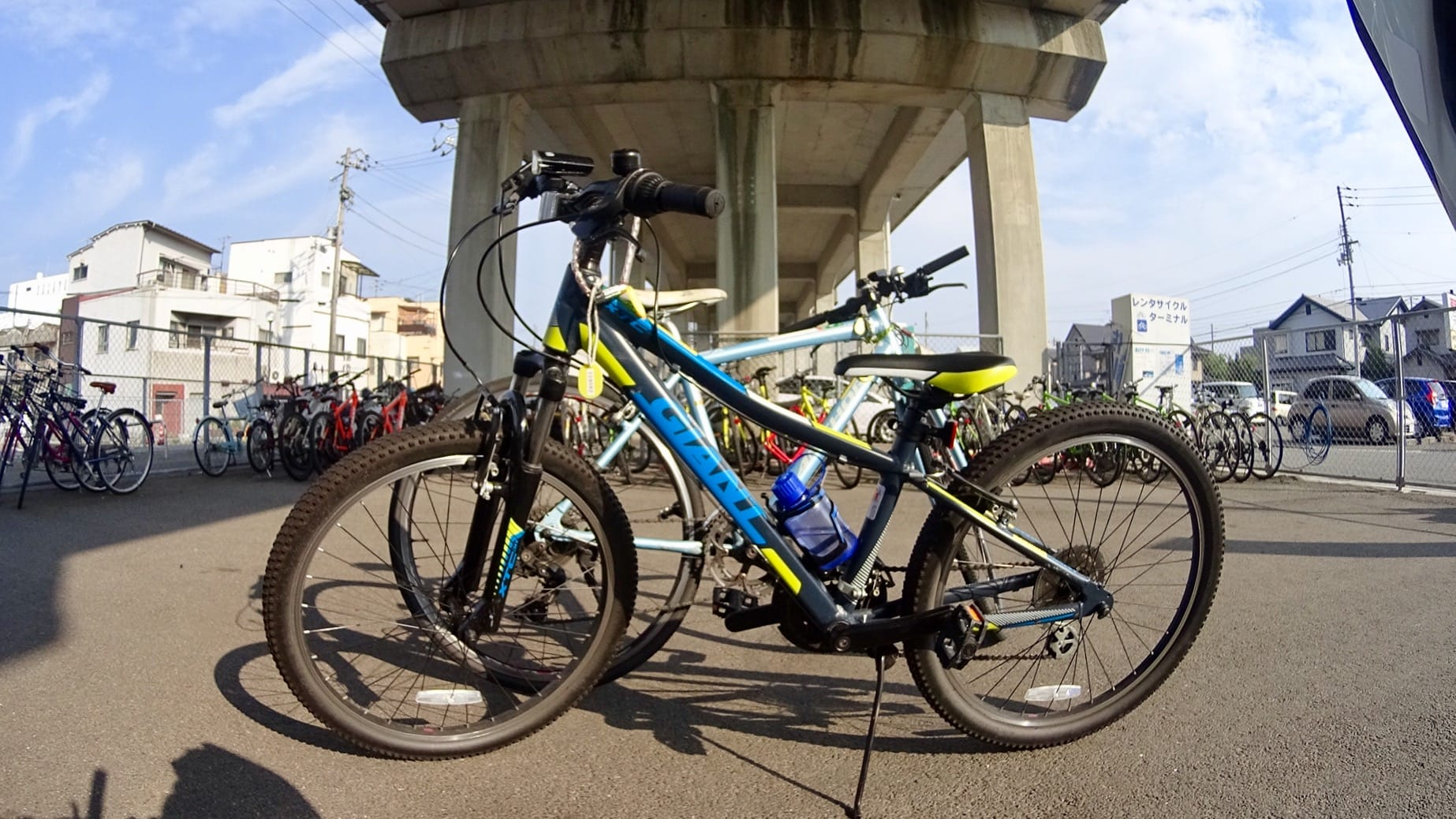 Bikes for my family at the JR Imabari Station Rent-a-cycle terminal