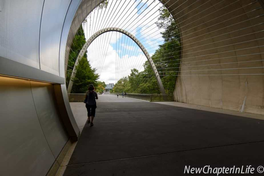 A suspension bridge linking to the Museum at the end of the tunnel