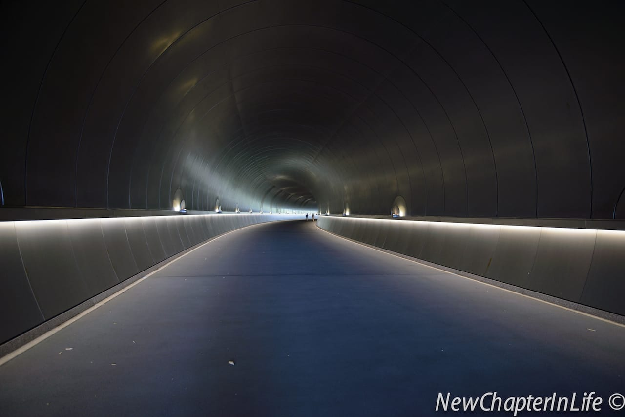 The Metallic tunnel