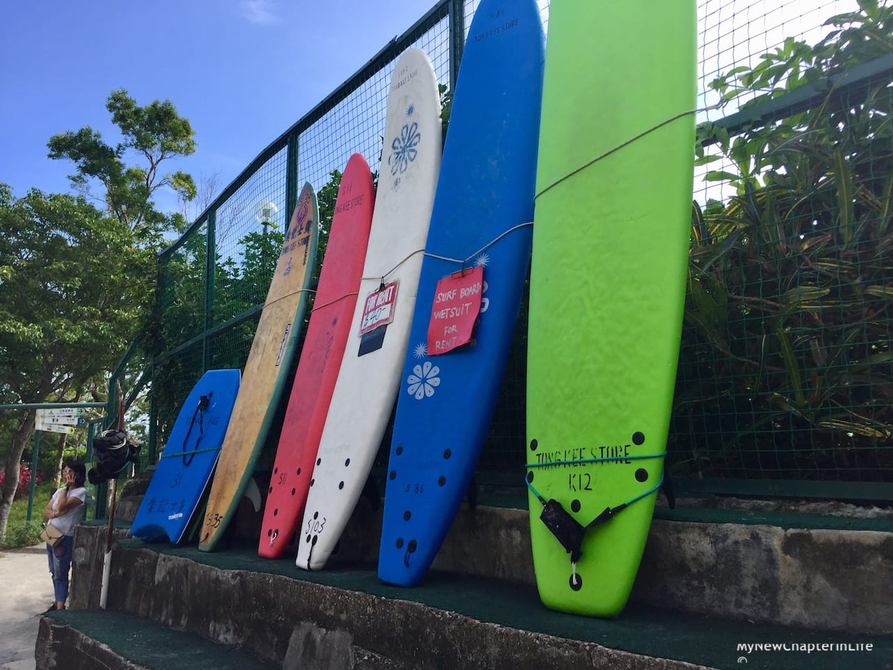 Colorful surf boards for rental