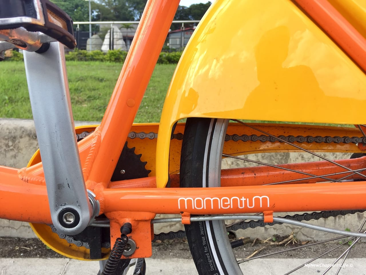 微笑單車其實是㨗安特生產的Momentum YouBike is actually the Giant Momentum