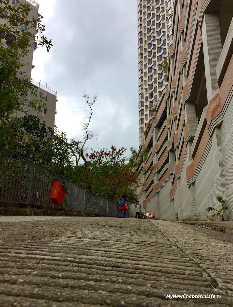 竹林苑傍灣仔自然徑的入口 Entrance of Wanchai Green Trail next to Bamboo Grove