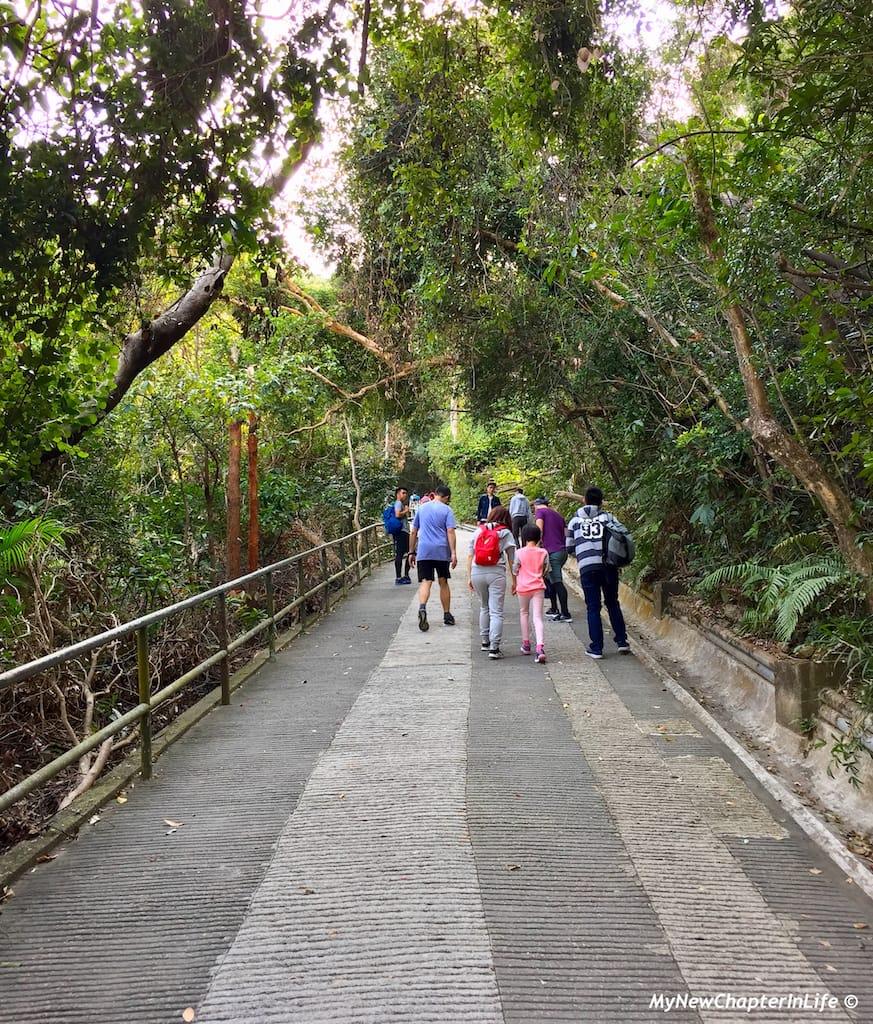 一家大小的行山活動 Family hiking