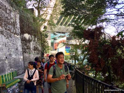 山頂旅客 Group of tourists